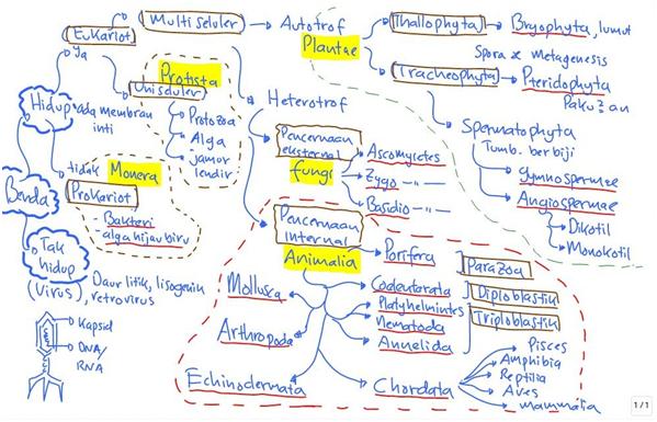 konsep taksonomi makhluk hidup