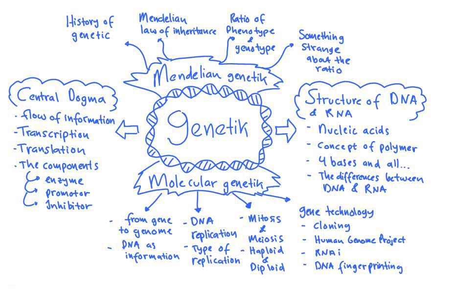 Genetik Biologi kelas XII