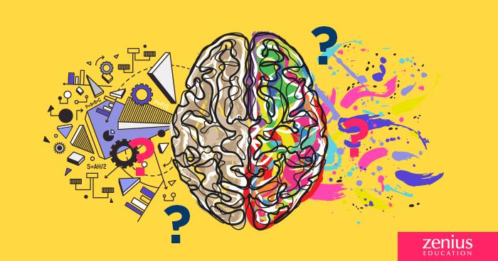 Bedah Tuntas Mitos Otak Kanan / Otak Kiri 12