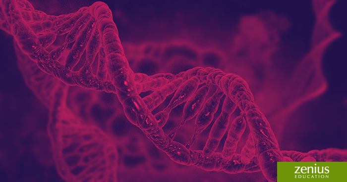 Tips Persiapan Belajar SBMPTN Biologi 17
