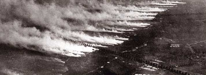 Serangan gas beracun pada Perang Dunia I