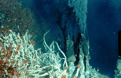hydrothermal-vent