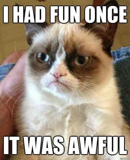 Meme grumpy cat pertama yang jadi viral