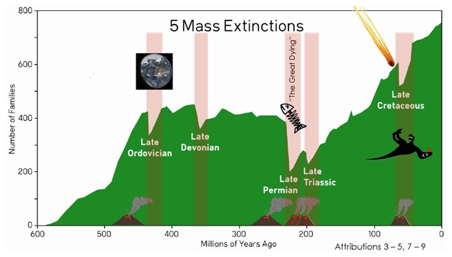 5-mass-extinction