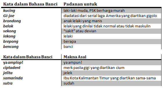 bahasa-banci-new