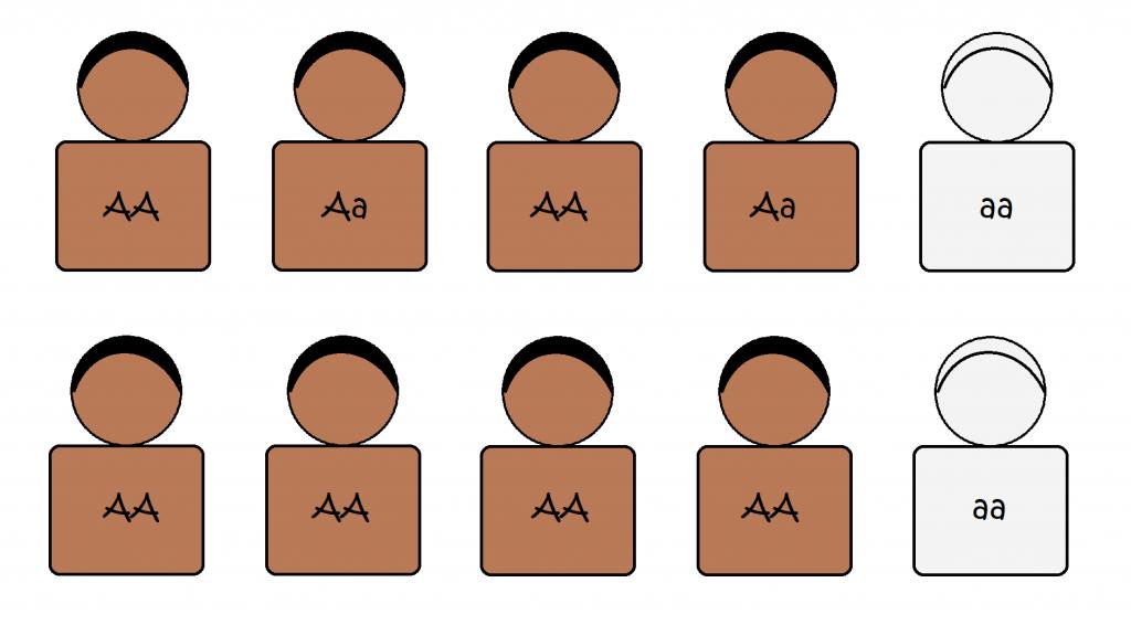 Penerapan Persamaan Kuadrat dalam Genetika 95