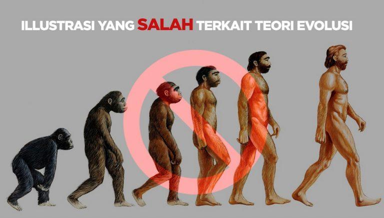 Berbagai Pandangan Keliru tentang Teori Evolusi 28
