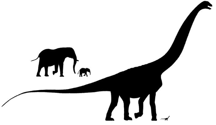 Mengapa Dinosaurus Bisa Berukuran Raksasa? 215