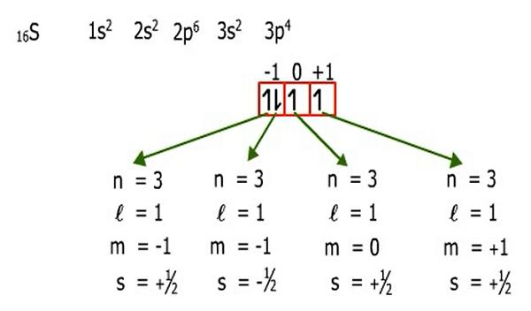 Larangan pauli mekanika kuantum