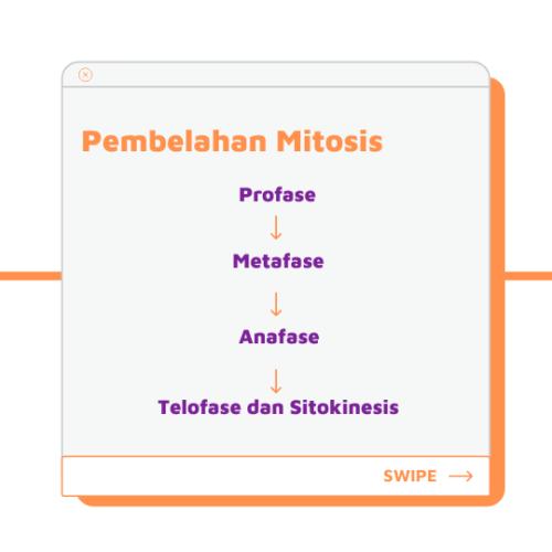 Biologi Kelas 12 Bab 4